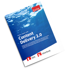 Content Delivery 2.0 Flyer